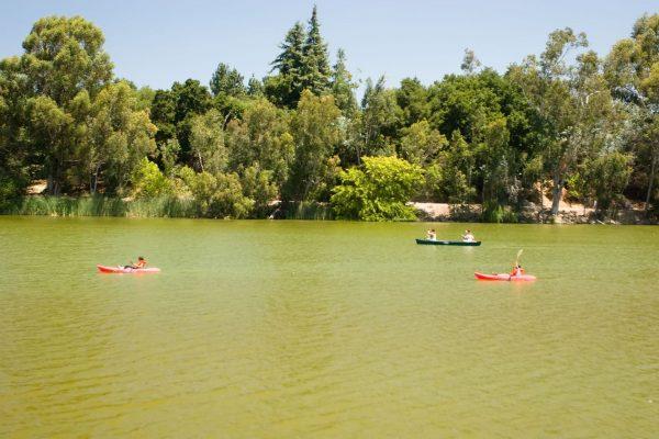 Vasona park, in Los Gatos, California